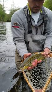 #40fish
